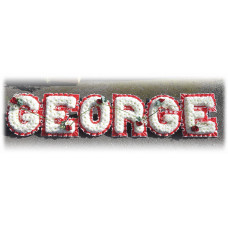 George Tribute