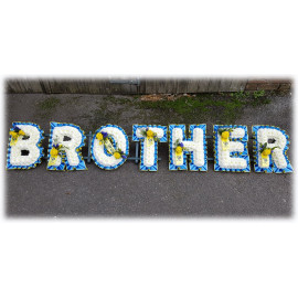 Brother Tribute Blue and Yellow